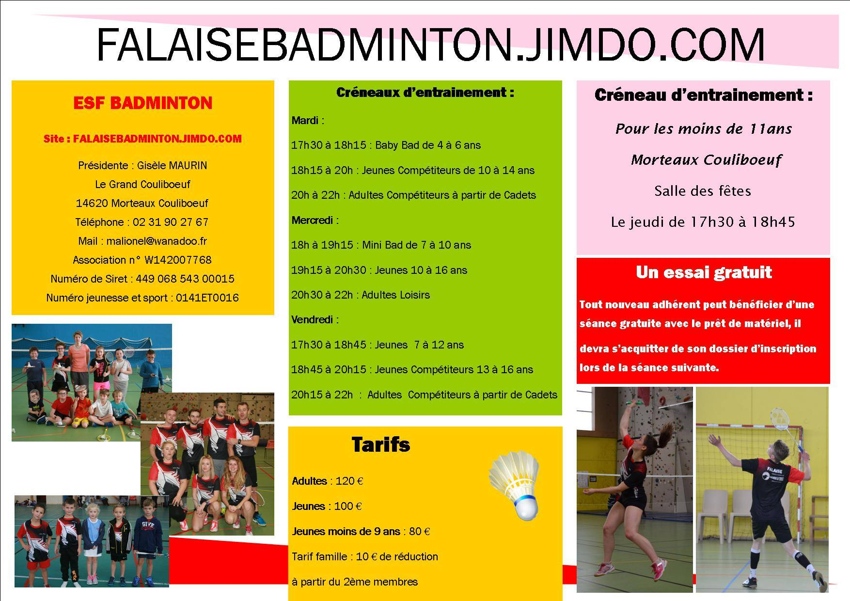 Badminton 2017-2018