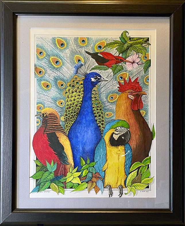 """""""Oiseaux"""""""